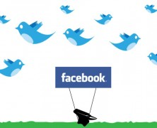 stateofSTANCE on twitter & facebook